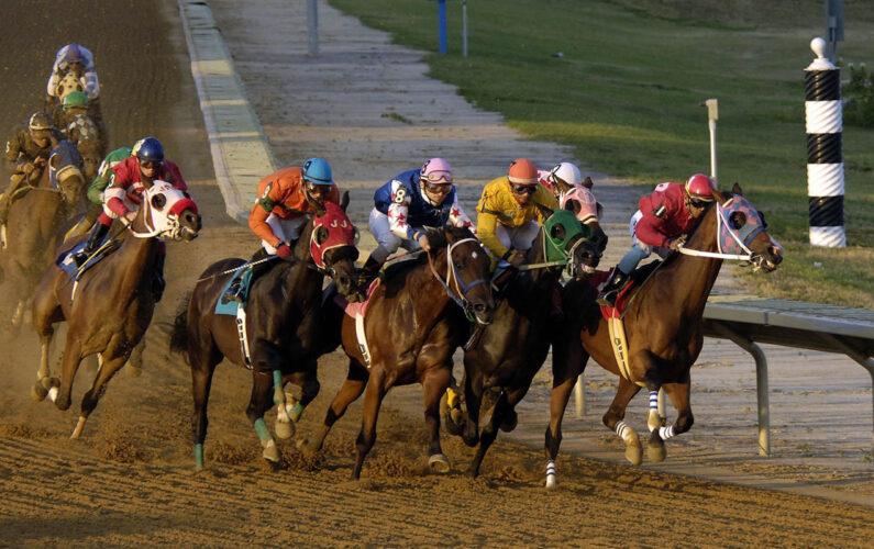 Hipercasino En Fazla Kazandıran At Yarışı Taktikleri